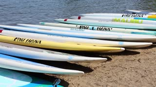 paddle board sales